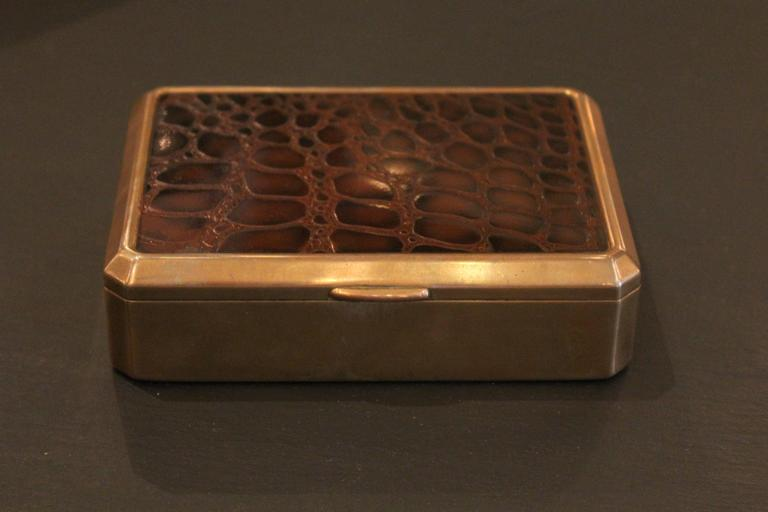 English Crocodile and Brass Box 2