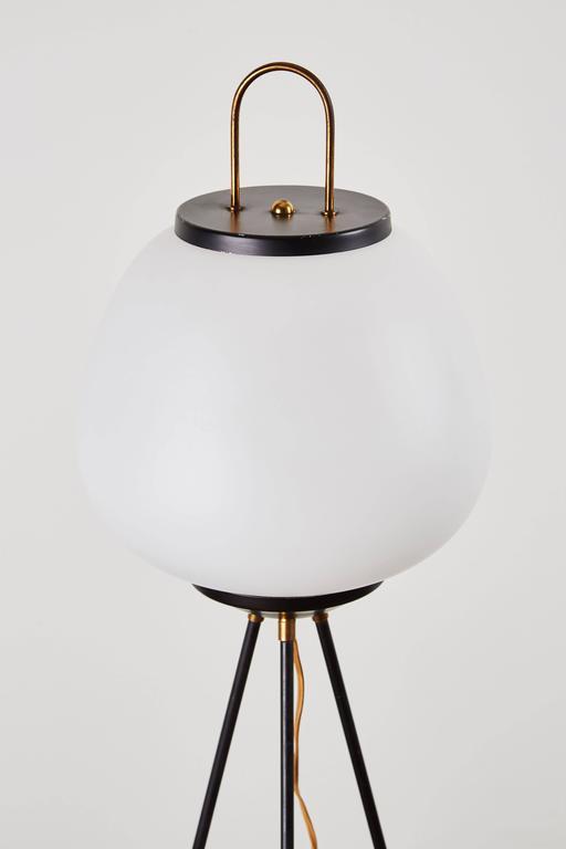 Tripod Floor Lamp by Stilnovo 7