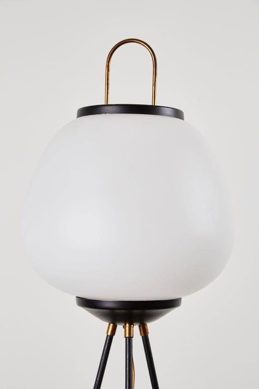 Tripod Floor Lamp by Stilnovo 4
