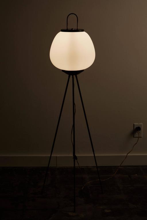 Tripod Floor Lamp by Stilnovo 3