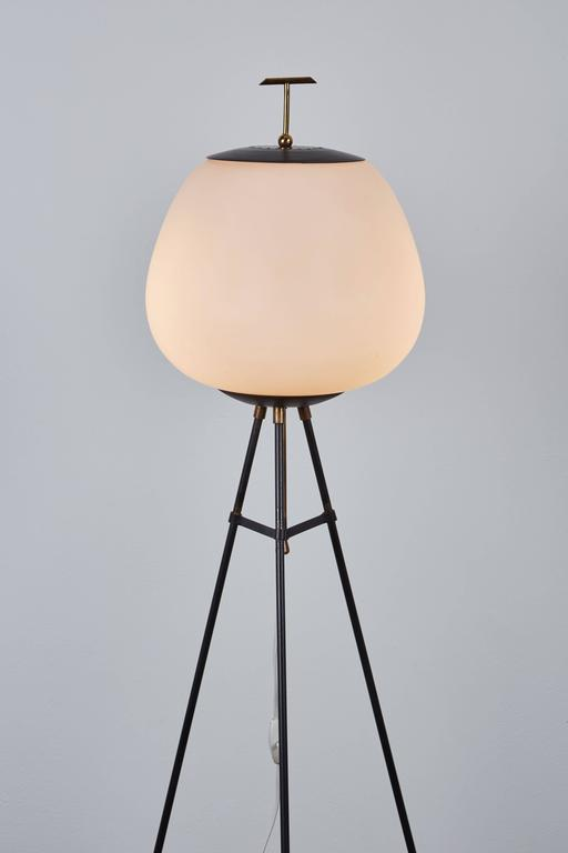 Tripod Floor Lamp By Stilnovo At 1stdibs