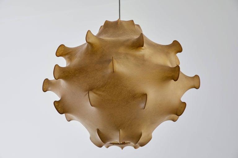 Taraxacum Pendant Light by Achille and Pier Giacomo Castiglioni For Sale 1