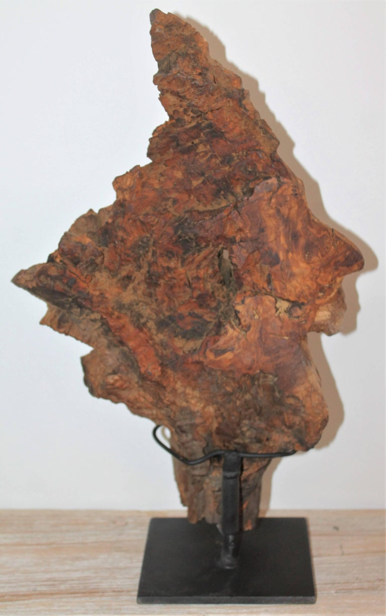 Hand-Carved Indian Head of Wood For Sale 2