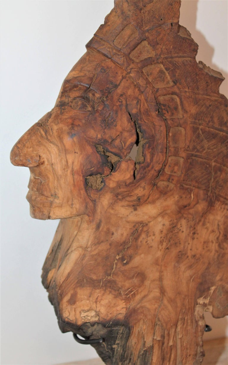 This is a hand-carved Indian head is carved from one piece of burl wood and is on a cast iron mount. The condition is very good.