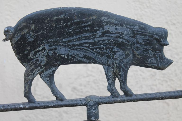 Metalwork 19th Century Cast Iron Pig Weather Vane with Directionals For Sale