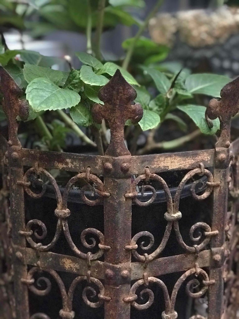 Victorian 19th Century Decorative Iron Jardinière from France  For Sale
