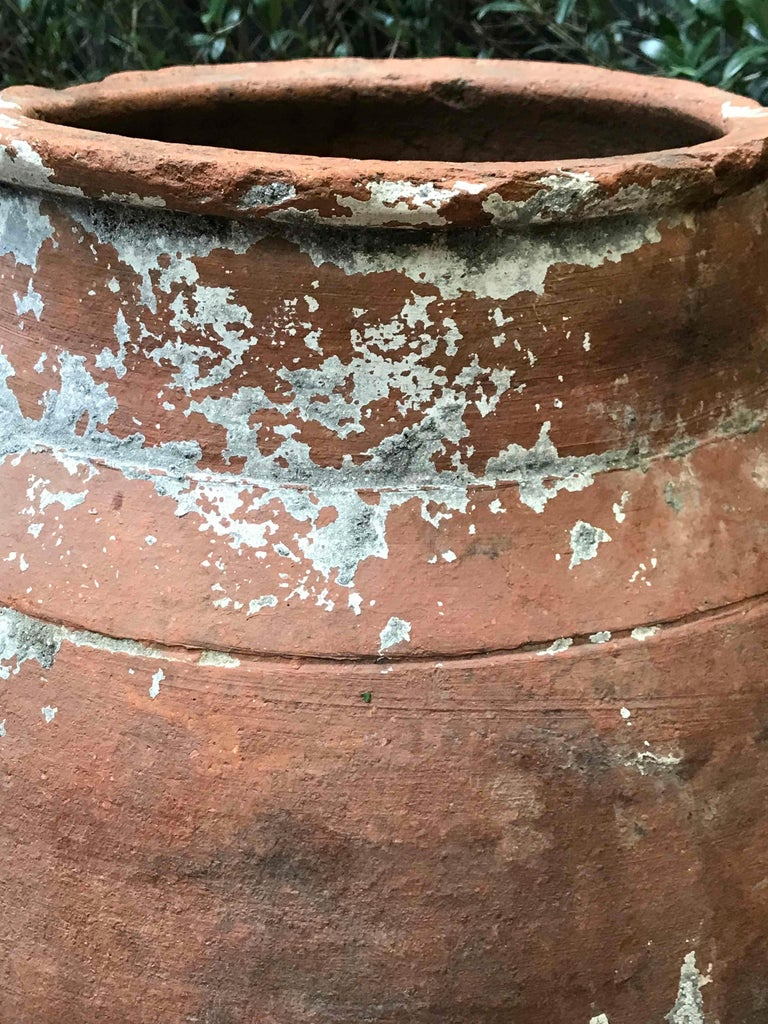 Large 19th Century Terra Cotta Pot with Tapered Base from France In Good Condition For Sale In Los Angeles, CA