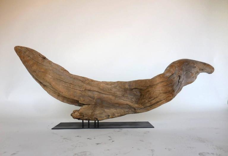 American Driftwood Sculpture For Sale