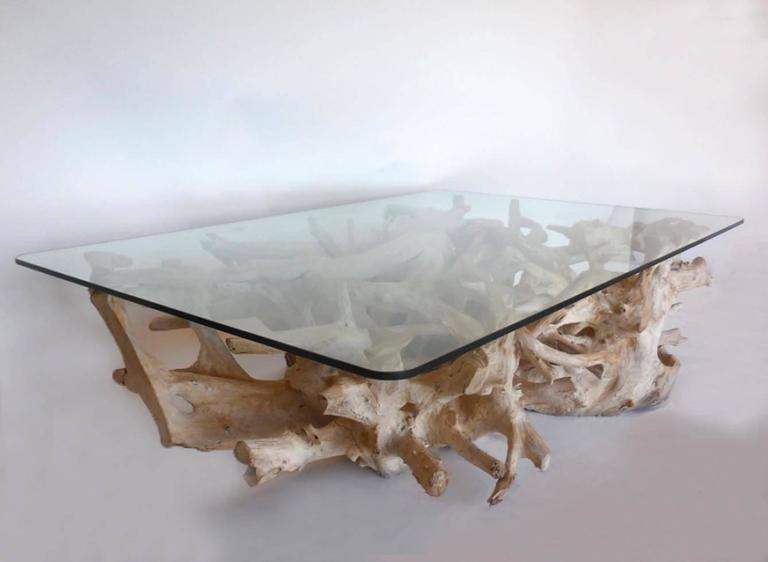 Stupendous Sculptural Teak Root Coffee Table With Glass Top Download Free Architecture Designs Scobabritishbridgeorg