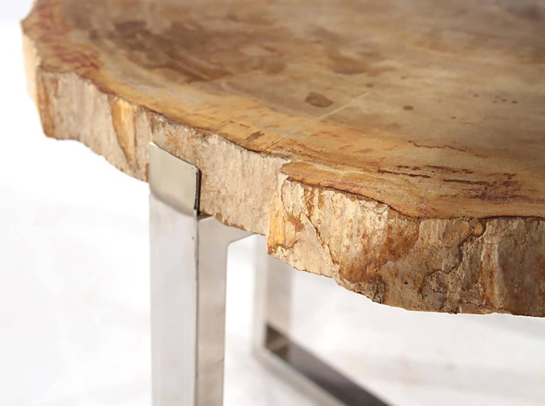 Pair of Petrified Wood Side Tables on Chrome Bases 4