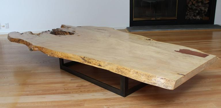Contemporary Spalted Maple Coffee Table For Sale