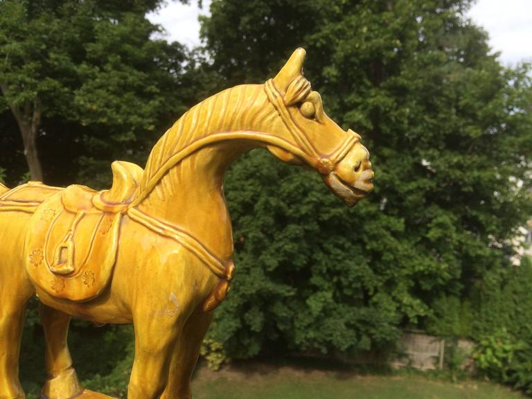 Chinese Yellow Glazed Horse On Teak Stand At 1stdibs