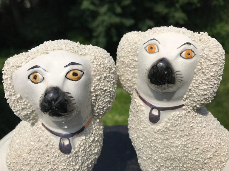 Pair English Staffordshire Spaniels For Sale 3