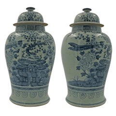Pair of Chinese Blossom Temple Jars