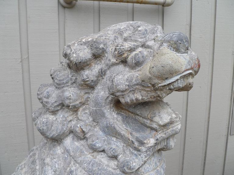 18th Century and Earlier Pair of Grey Stone Carved Foo Lions For Sale