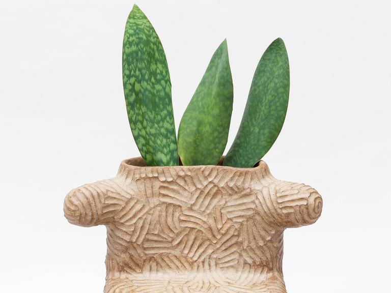 The largest in his series of clay furniture, the tolima plant chair is hand-built out of stone wear ceramic clay and embedded with live plants. Works outside or indoors.