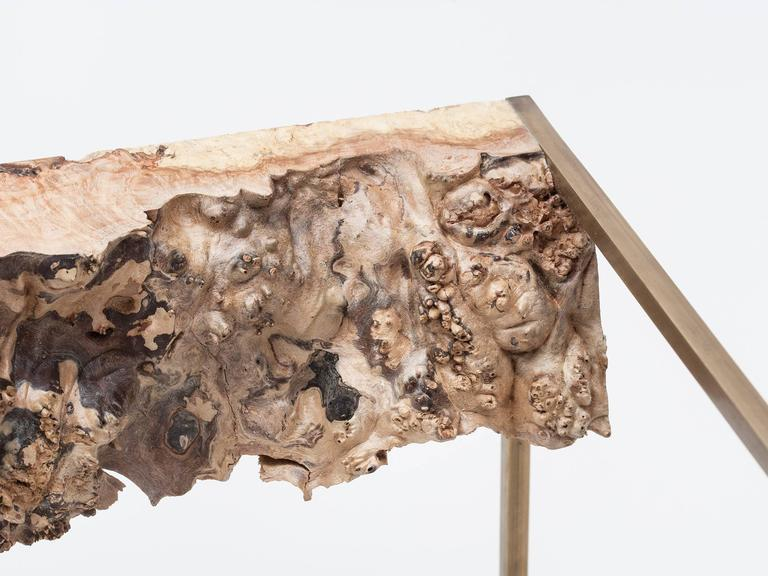 Bronze and Burl Wood Side Table by Huy Bui 6
