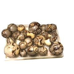 Collection Of Septarian Balls, Brazil, Contemporary