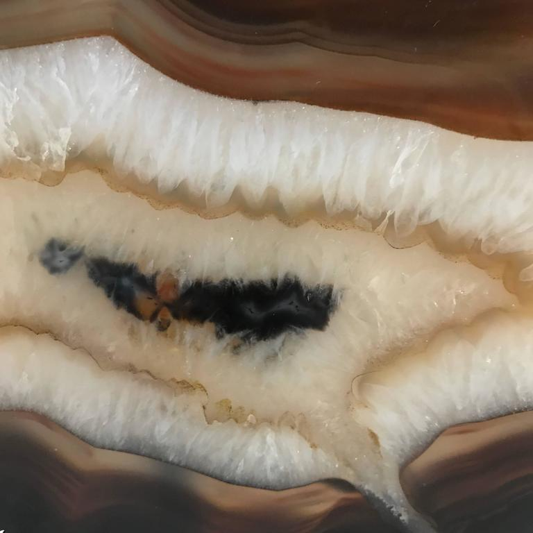 Prehistoric sliced agate on custom steel stand. Brown and black border clear white center. Transparent when in front of a light source. Stand measures 5