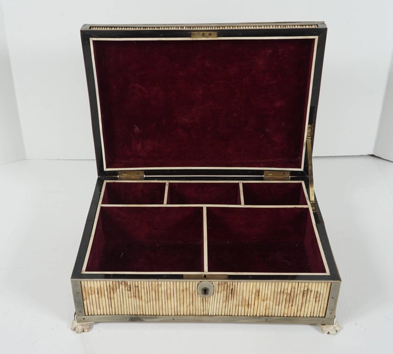 19th Century English Regency Period Horn, Quill and Bone Dressing Box For Sale 2