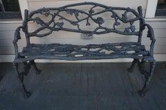 Early 19th Century English Iron Garden Bench