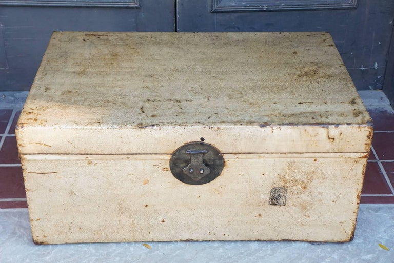 Late 19th or Early 20th Century Chinese Sandalwood and Pigskin Trunk In Good Condition For Sale In Hudson, NY