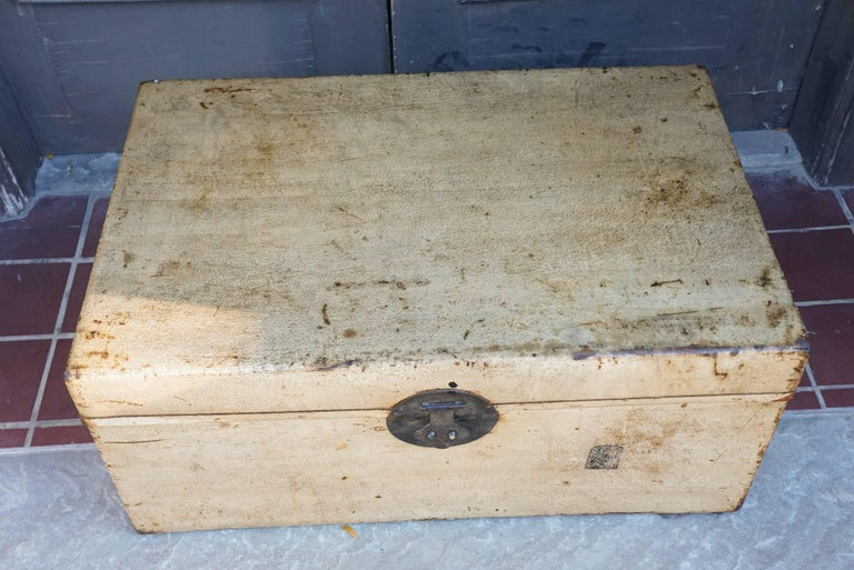 Late 19th Century Late 19th or Early 20th Century Chinese Sandalwood and Pigskin Trunk For Sale
