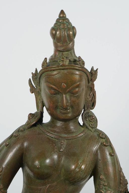 19th Century Tibetan Patinated Bronze Figure of Tara on New Black Base 4