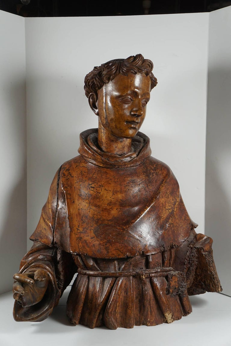 Renaissance Lifesize Sienese Wood Carved Bust of a Monk, circa 1580-1600 For Sale