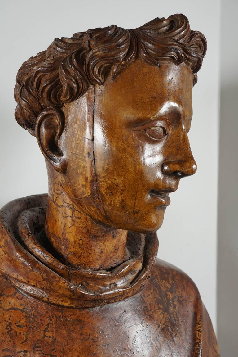 Lifesize Sienese Wood Carved Bust of a Monk, circa 1580-1600 For Sale 2