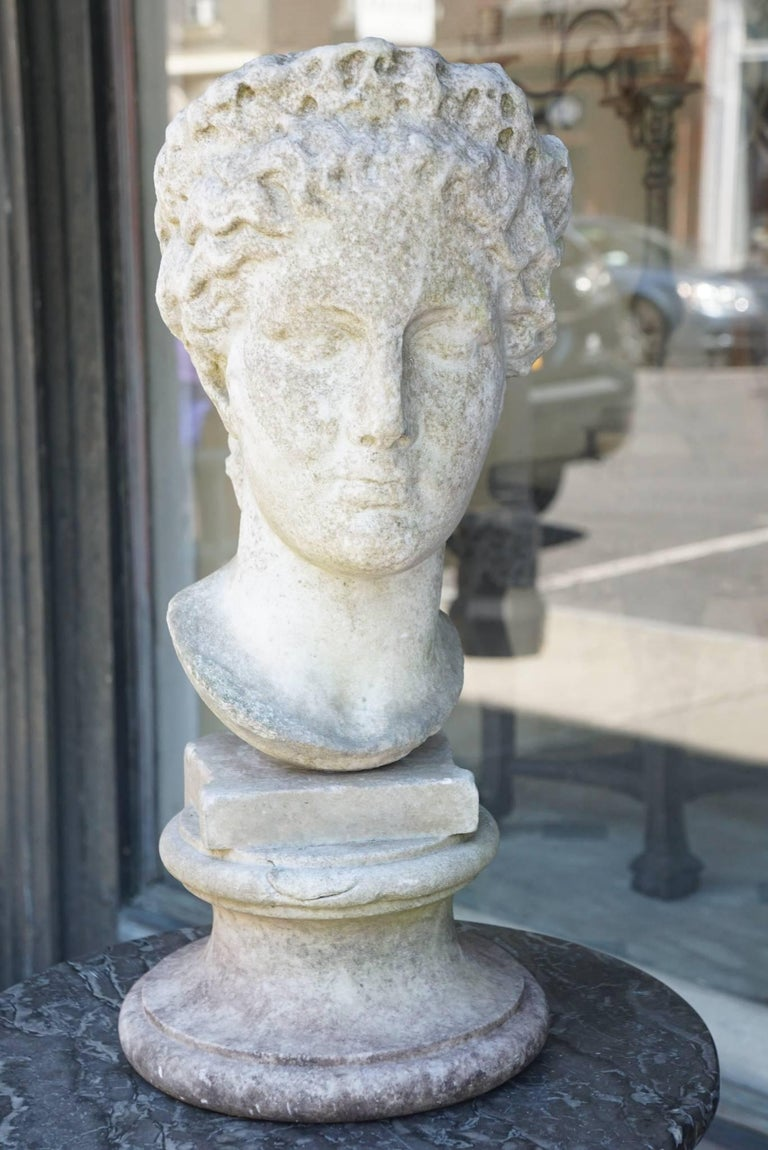 Italian 19th Century Carved Marble Bust after the Antique 7