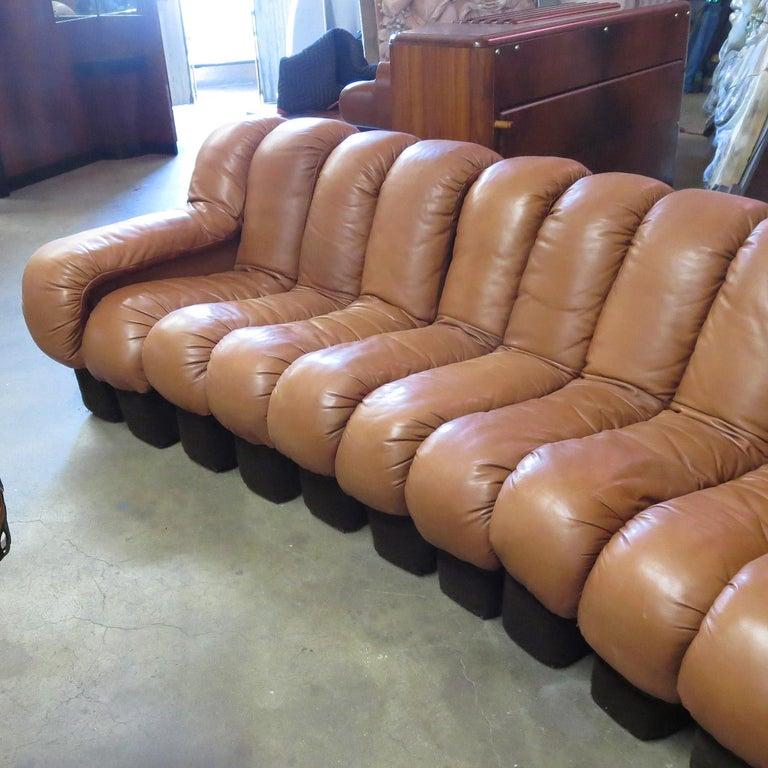 Swiss De Sede DS-600 Non Stop Leather Sofa, 16 Sections For Sale
