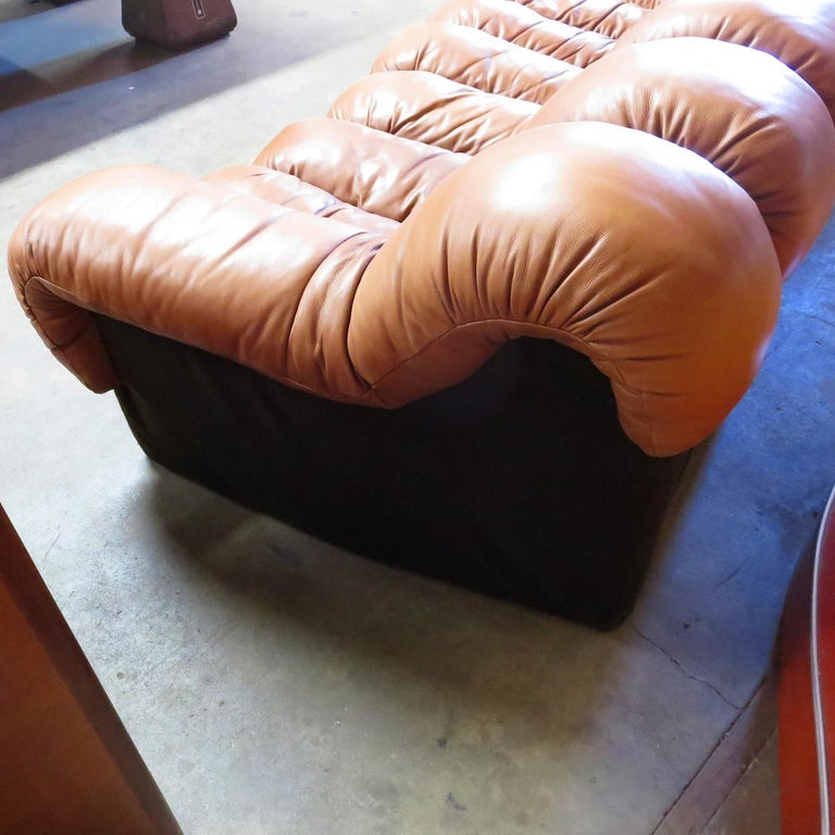 De Sede DS-600 Non Stop Leather Sofa, 16 Sections For Sale 1
