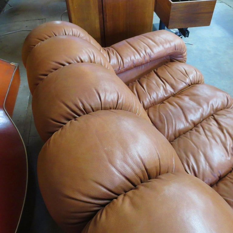 De Sede DS-600 Non Stop Leather Sofa, 16 Sections For Sale 2