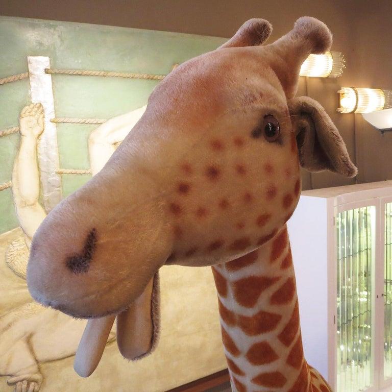 German Steiff Display Giraffe For Sale