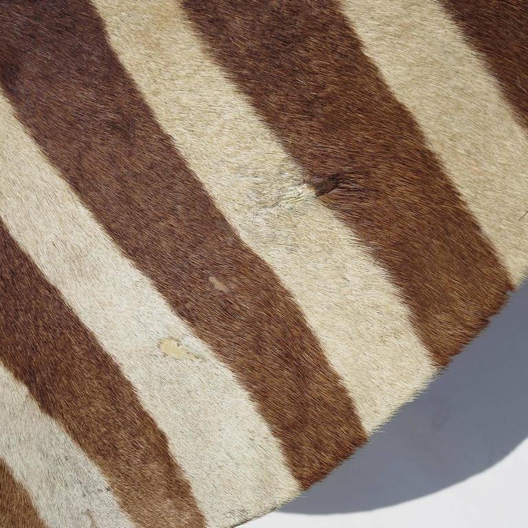 African Zebra Hide Drum Coffee or Side Table 6