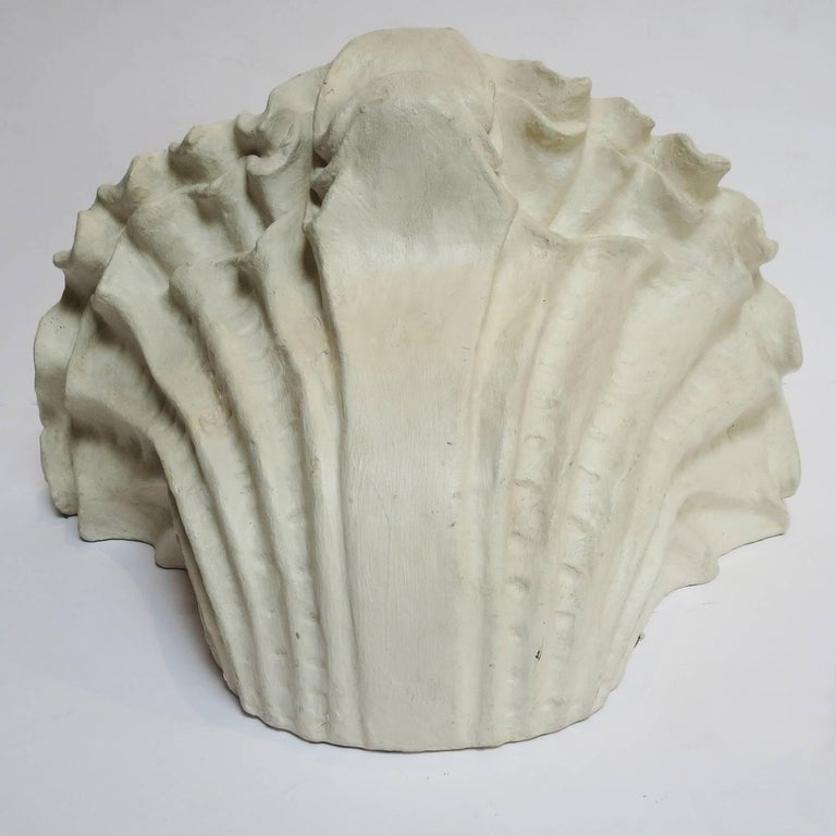 American Plaster Shell Wall Sconces in the Manner of Serge Roche For Sale