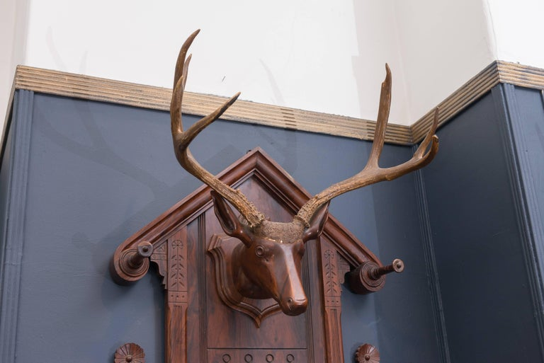 German Black Forest Folk Art Deer Head Coat Rack For Sale