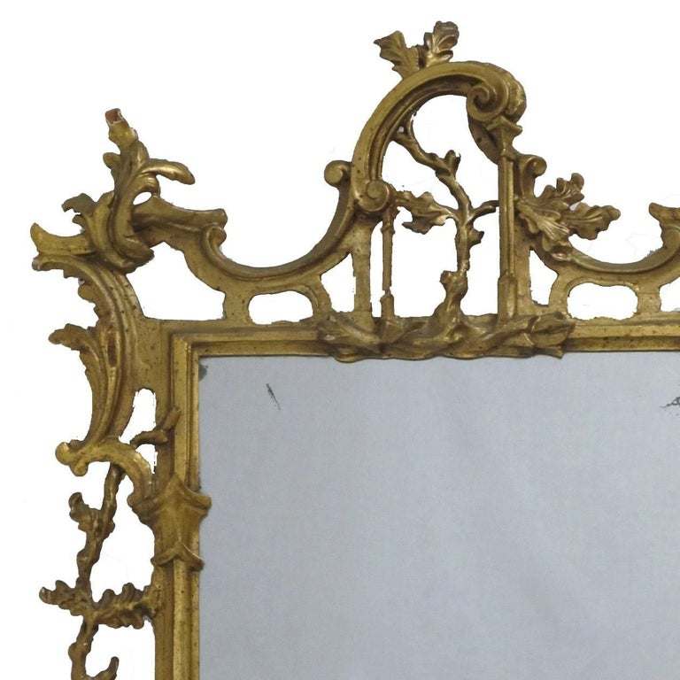 Carved 18th Century Italian Rococo Gilt Mirror For Sale