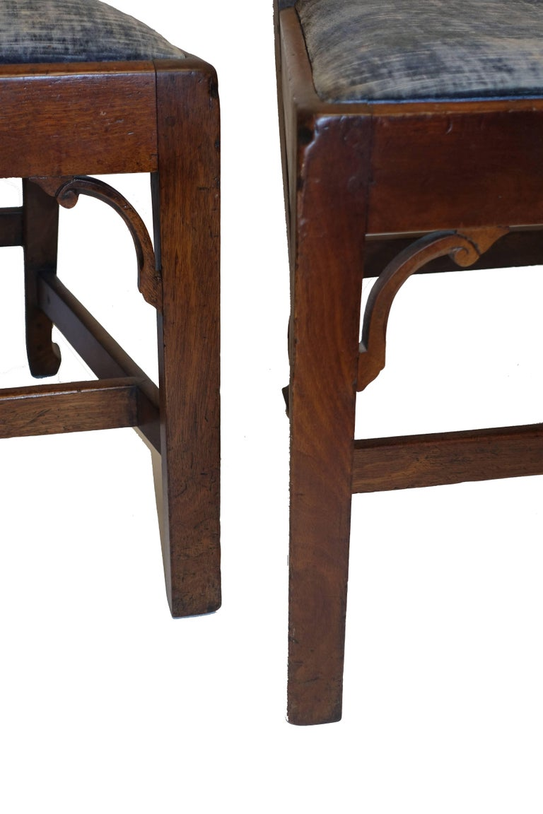 Set of Six Chippendale Style Walnut Dining Chairs circa 1800 9