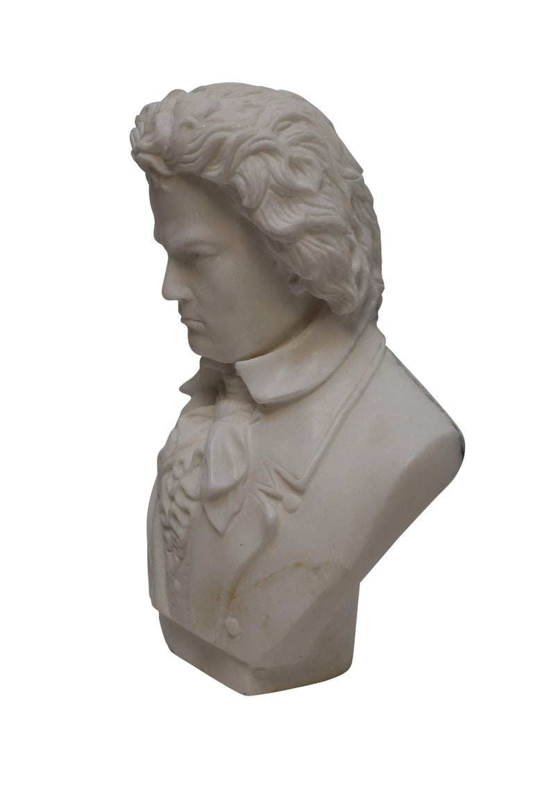 Carrera Marble Bust of Beethoven, 19th Century In Excellent Condition For Sale In San Francisco, CA