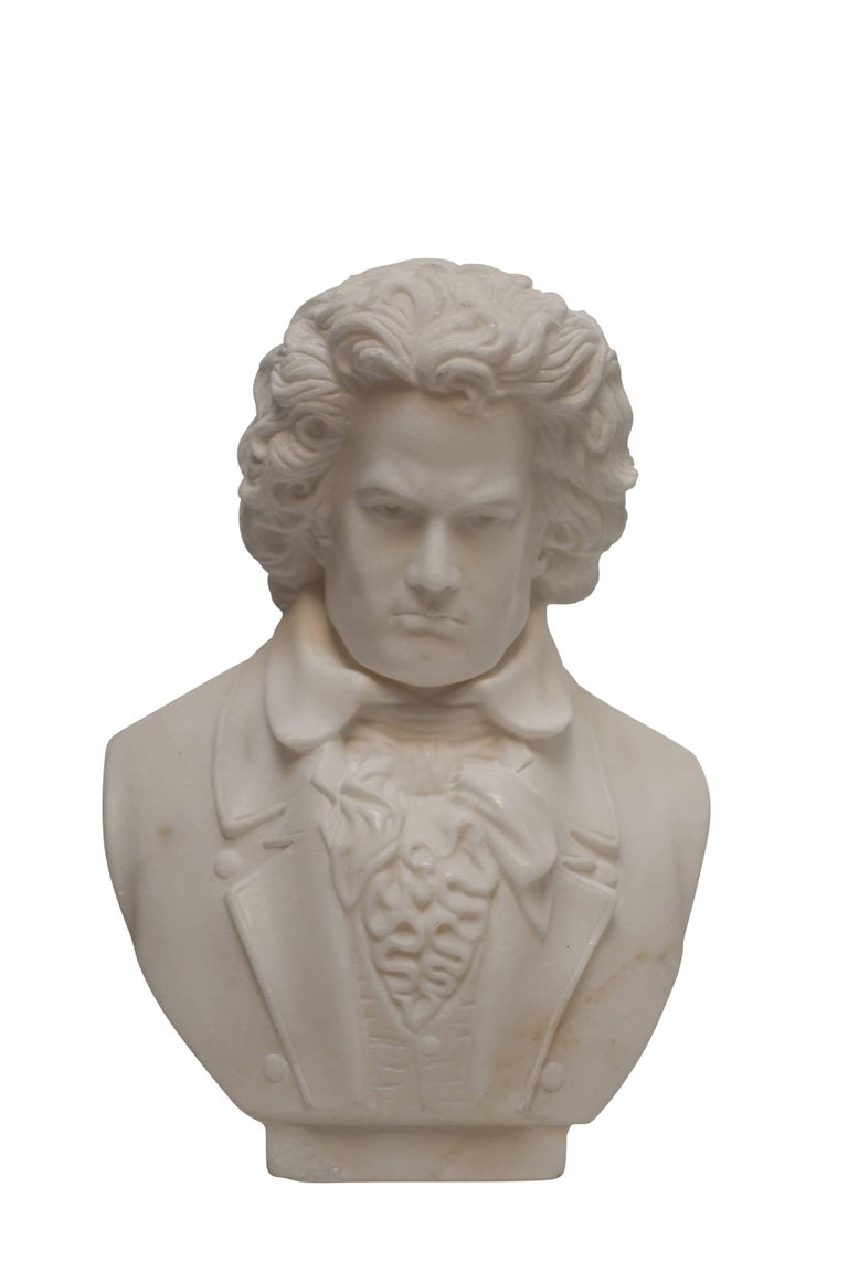 Carrera Marble Bust of Beethoven, 19th Century For Sale 1