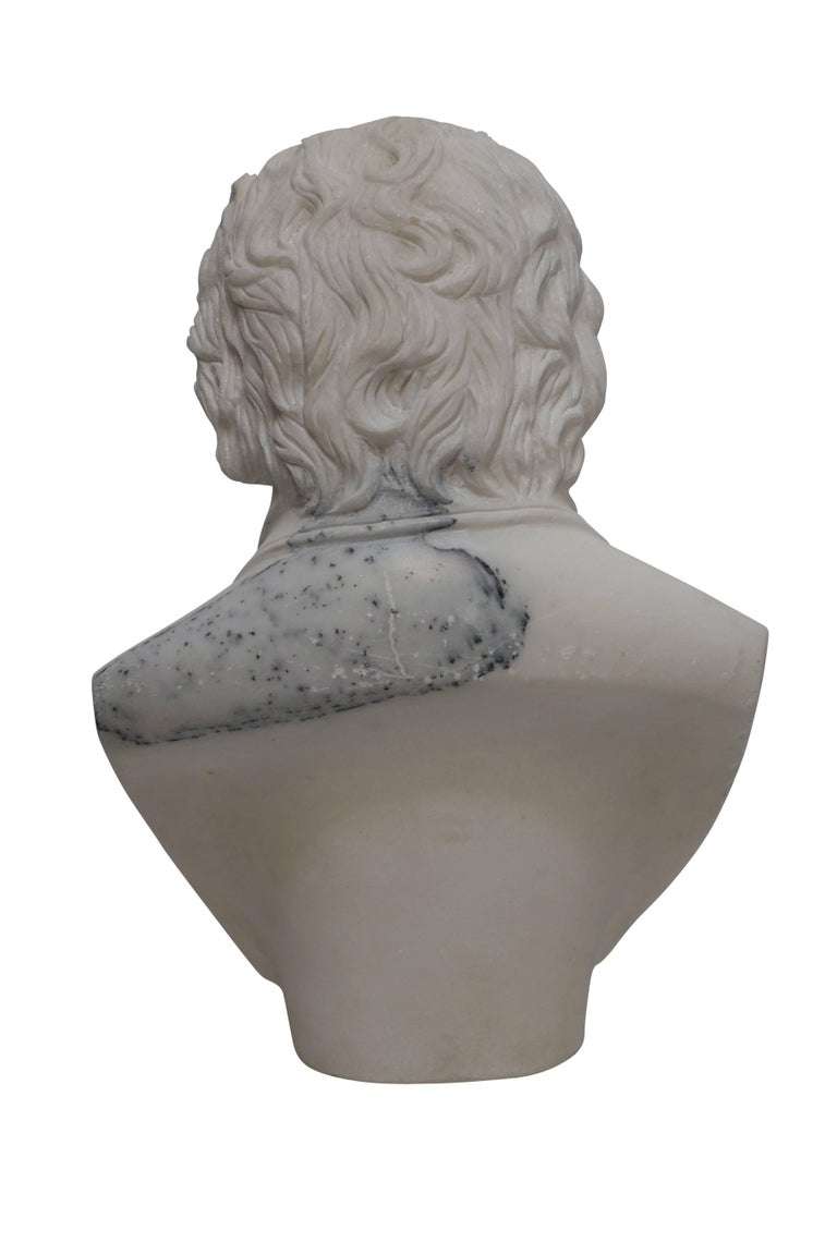 Carrera Marble Bust of Beethoven, 19th Century For Sale 5