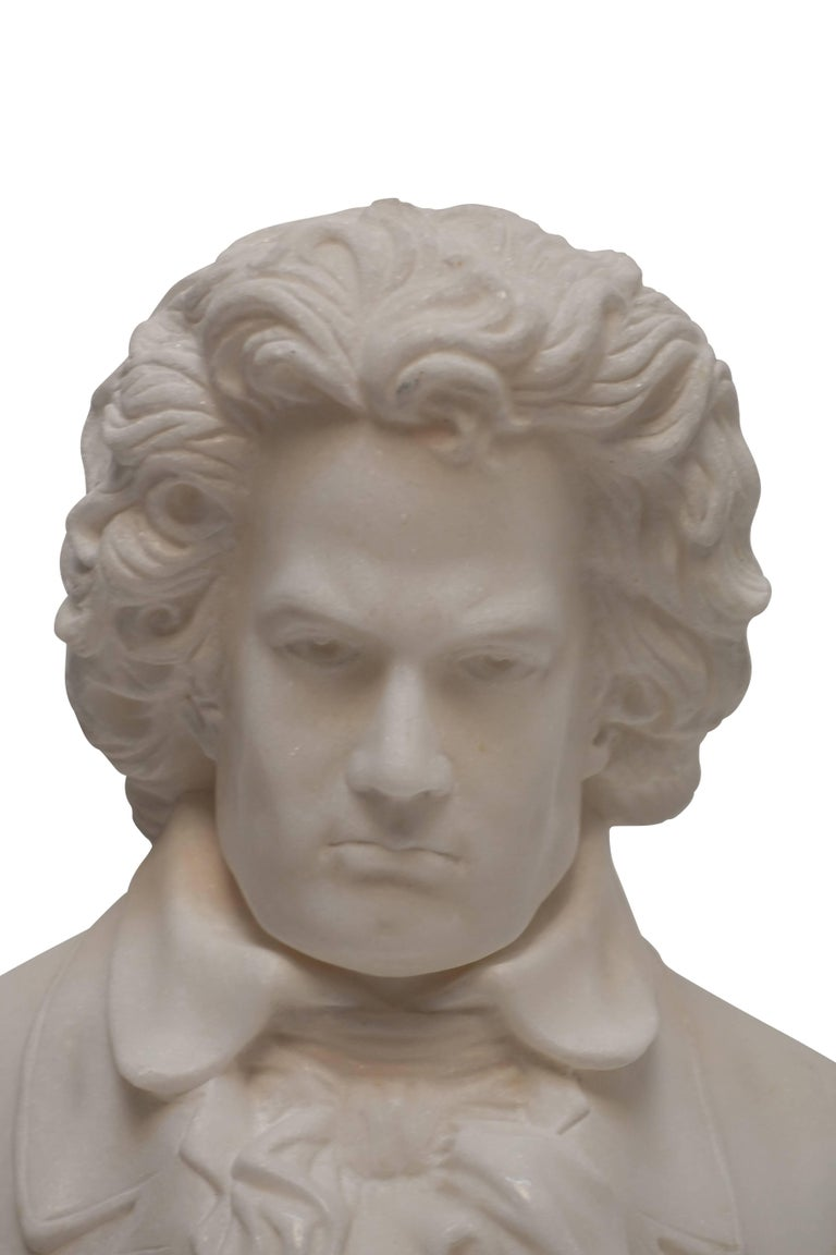 Carrera Marble Bust of Beethoven, 19th Century For Sale 2