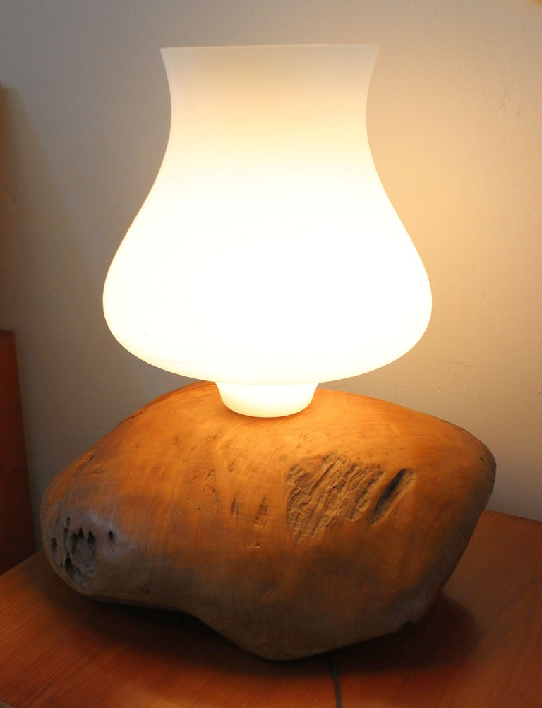 Italian table lamp by Gimo Fero Venation artist .Because of the size of the light fixtures it could be a floor lamp. Table lamp base is from the fallen long ago trees, and possible Olive tree. Murano white opaline glass shade.