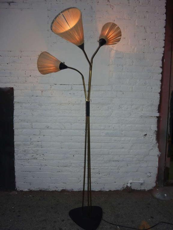 Adjustable neck lamp shades, second height is 59 inches.