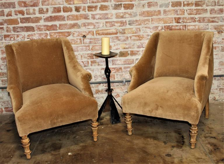 Austrian Biedermeier chairs new Mohair upholstery cafe late color.