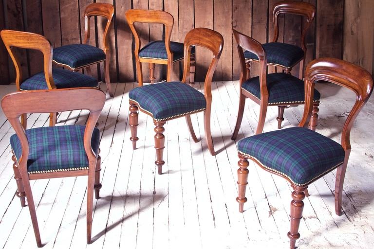William IV Set of 8 'Balloon' Chairs in Cuban Mahogany and Blue Plaid Wool 1830s 3