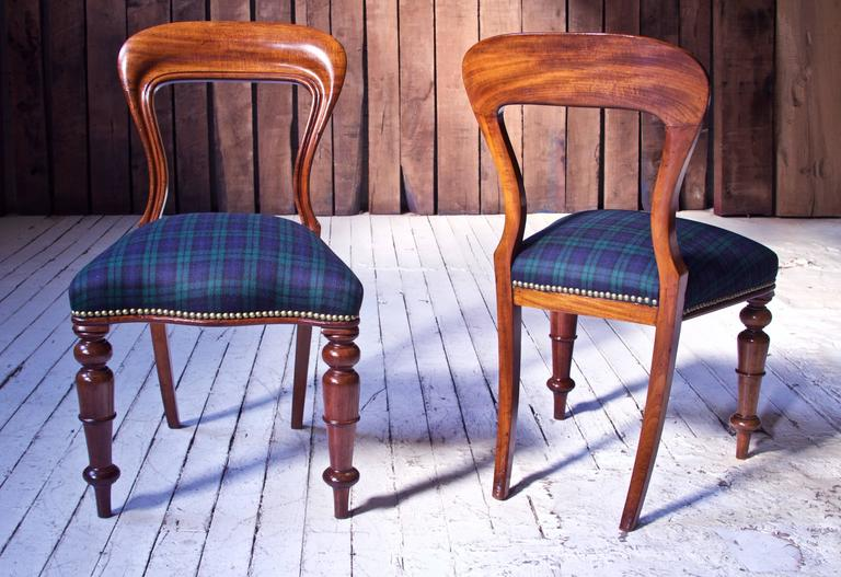 Gorgeous set of likely Irish early-mid 19th century 'Balloon' back dining chairs in carved and moulded well-figured Cuban mahogany with splayed saber back legs and tapering spindle-turned front legs over pegged feet. Serpentine stuff-over seats have