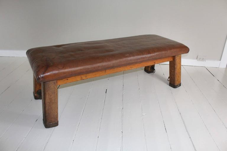 French Leather Gym Bench 4